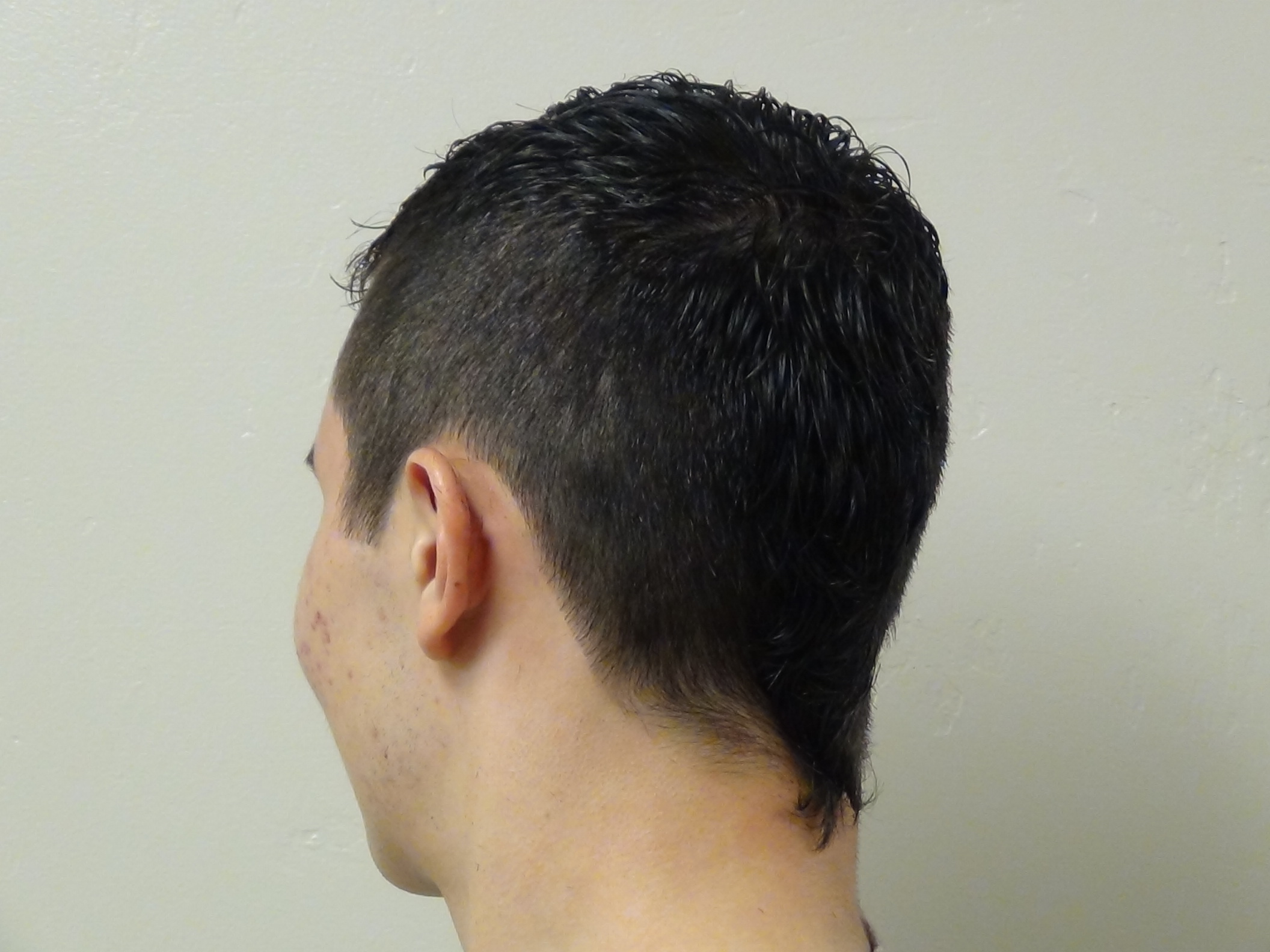 Stupendous Boys Short Haircut With Tail Hairstyle Boys And Girls Hairstyles Schematic Wiring Diagrams Amerangerunnerswayorg